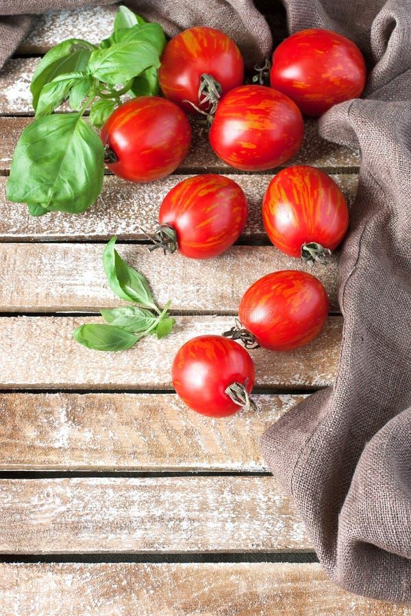 Tomates délicieuses colorées fraîches image libre de droits