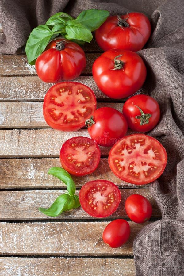 Tomates délicieuses colorées fraîches photo libre de droits