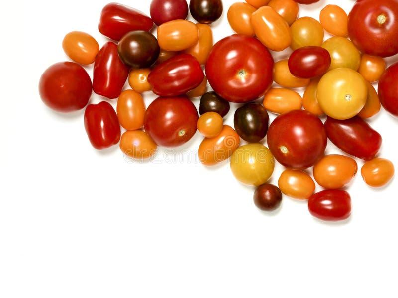 Tomates d'héritage sur le blanc images stock