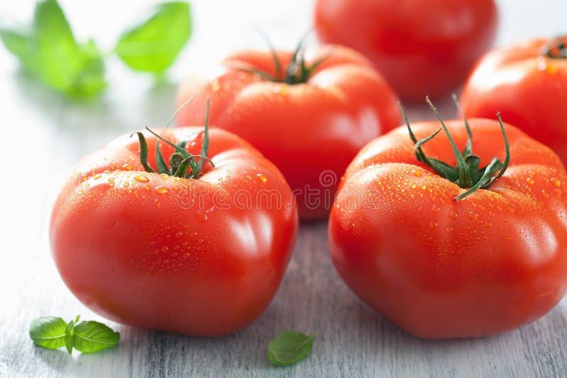 Tomates da carne e folhas da manjericão foto de stock