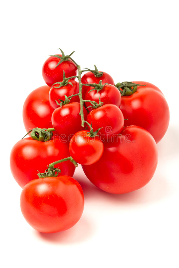 Tomates da videira imagens de stock royalty free