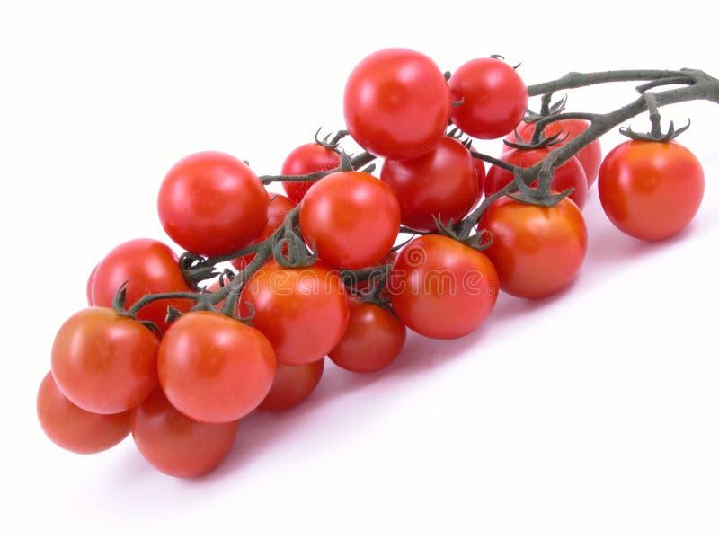 Tomates de cereja fotos de stock royalty free