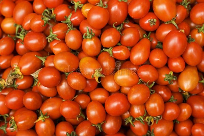 Tomates de cereja frescos imagens de stock royalty free