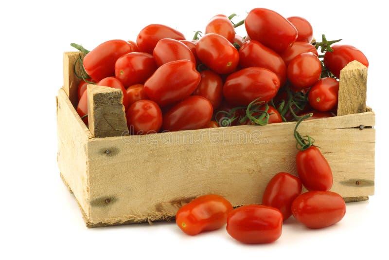 Tomates de cereja italianos frescos na videira fotos de stock