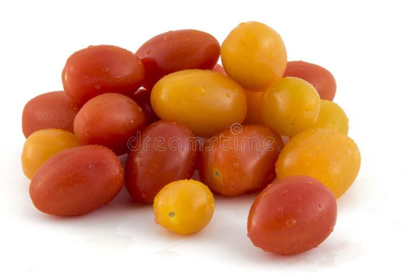 Tomates de cereja na foto branca do fundo Pi bonito foto de stock royalty free