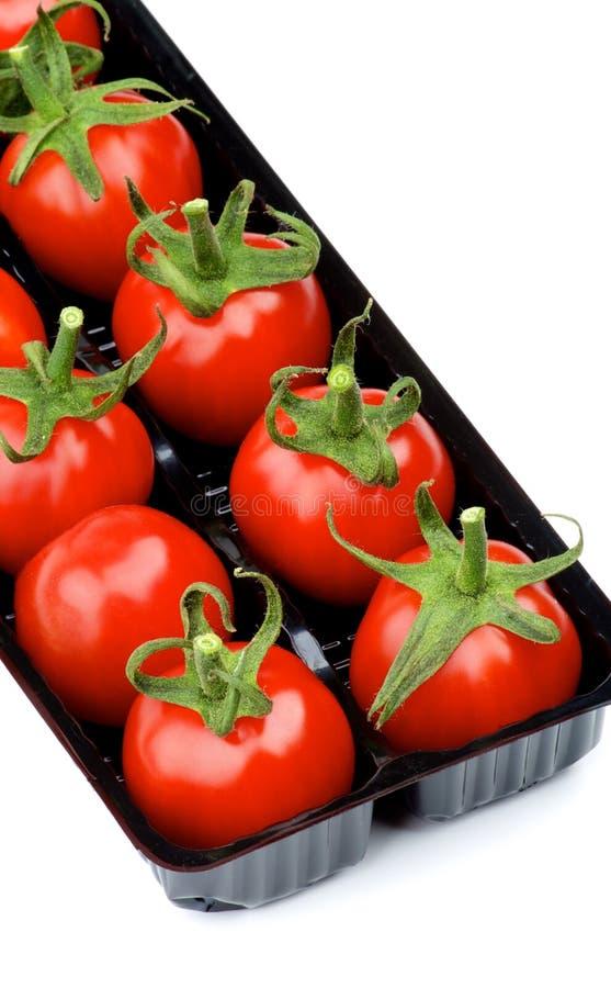 Tomates de cereja no recipiente imagem de stock royalty free
