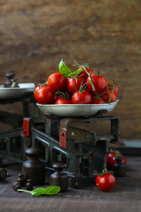 Tomates de cereja org?nicos fotos de stock royalty free
