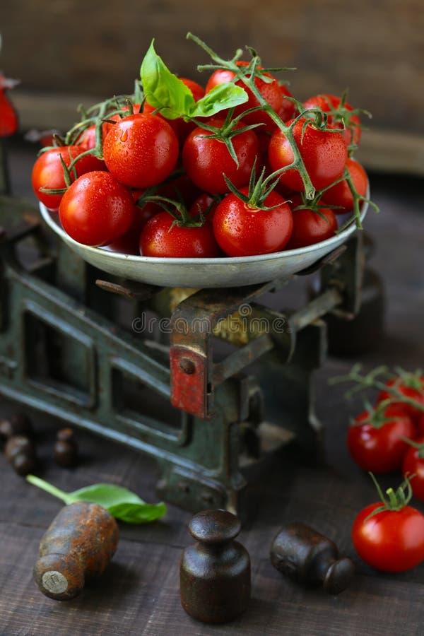 Tomates de cereja org?nicos imagem de stock royalty free