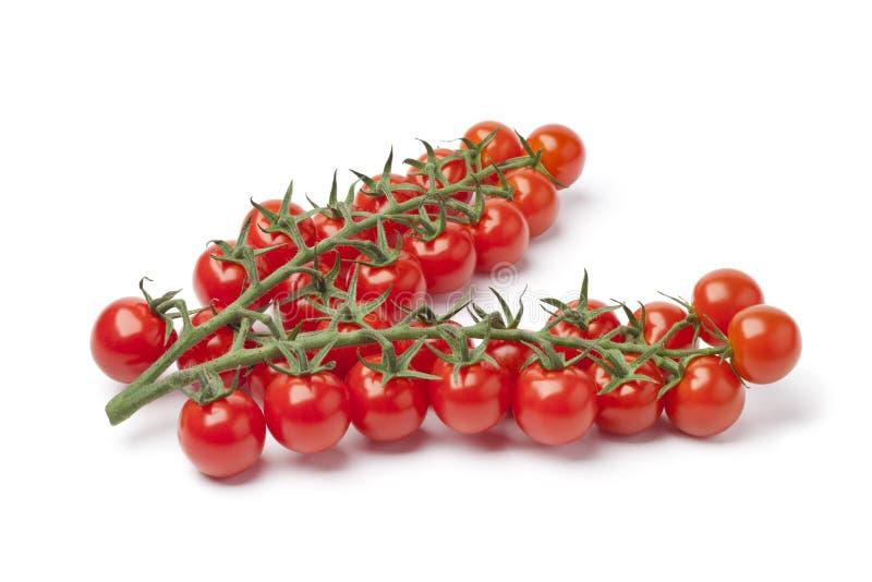 Tomates de cereja pequenos em uma videira fotos de stock