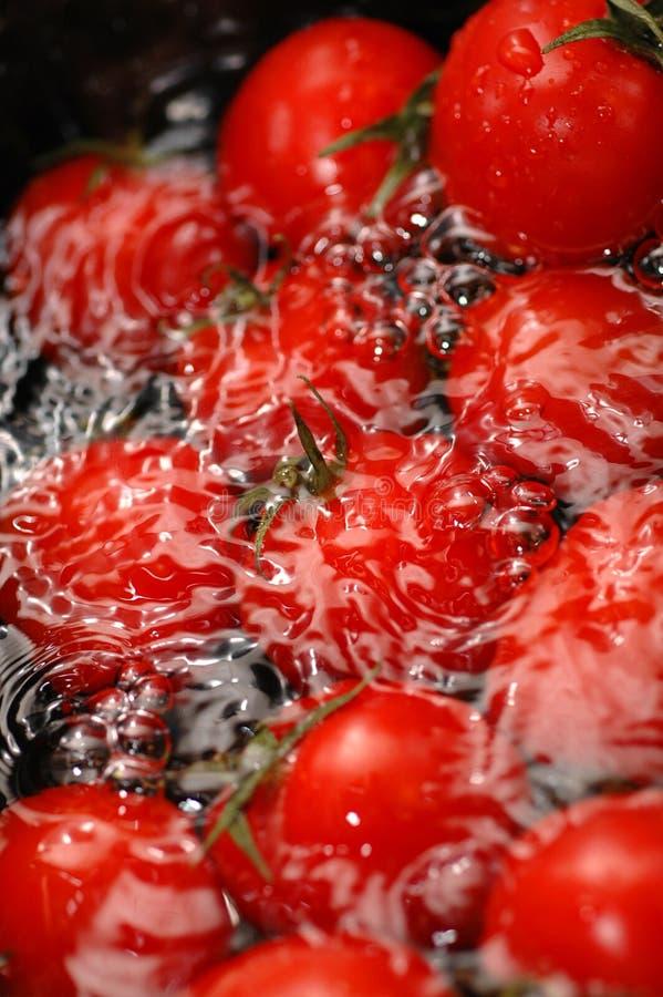Tomates de cereja vermelhos - 1 imagem de stock