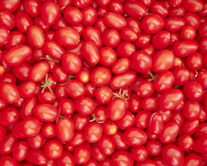 Download Tomates De Cereja Vermelhos Frescos Foto de Stock - Imagem de fresco, alimento: 26509660