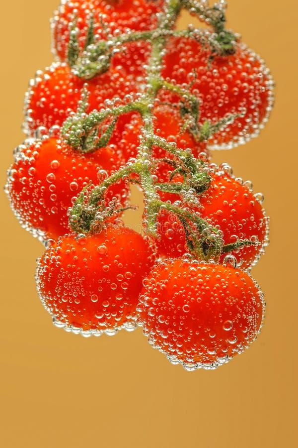 Tomates de cereja vermelhos maduros imagens de stock
