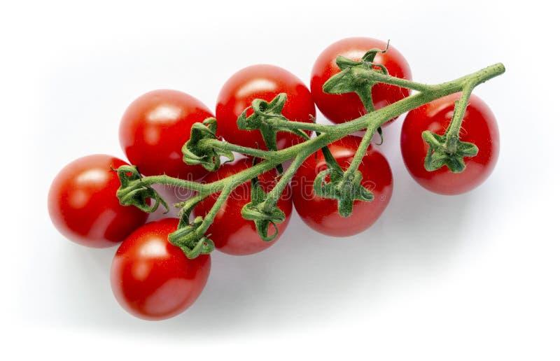 Tomates de cereza en la vid imágenes de archivo libres de regalías