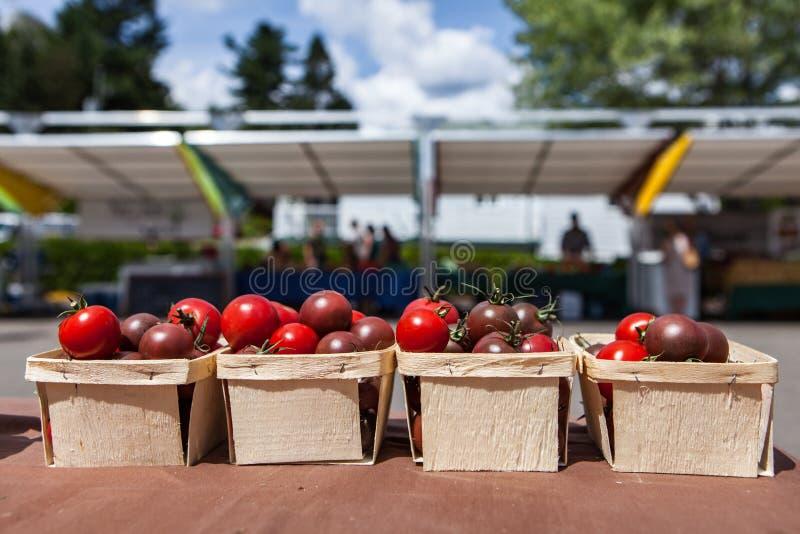 Tomates de cereza en venta en pequeñas cestas en el mercado del granjero fotografía de archivo