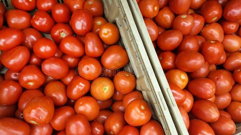 tomates de cerises mûres au marché photo libre de droits