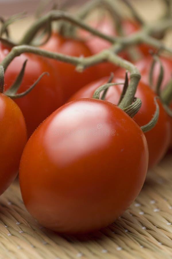 Tomates de ciruelo madurados vid foto de archivo