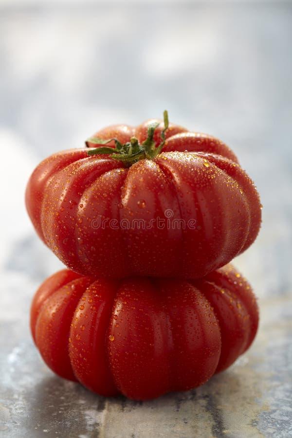 Tomates de Coeur de boeuf fotos de stock royalty free