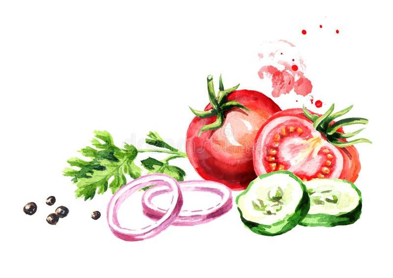 Tomates de las verduras frescas, pepino, cebolla, perejil, coriandro, cilantro, pimienta Ejemplo dibujado mano de la acuarela, ai stock de ilustración
