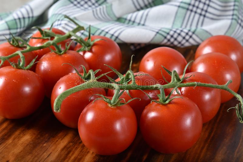 Tomates de perle mûries par vigne photos stock