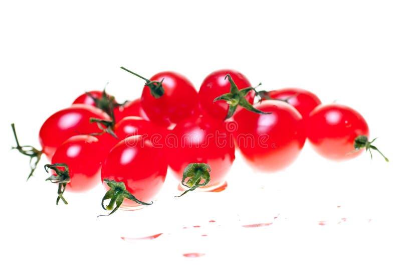 Tomates de Roma sobre o branco fotos de stock royalty free