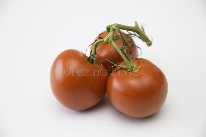 Tomates de serre chaude de botte image libre de droits