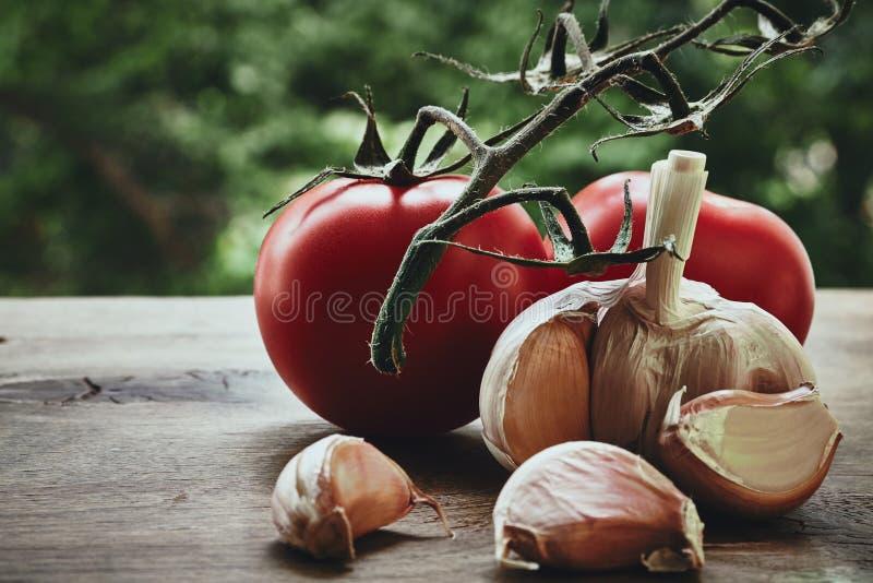 Tomates e alho imagens de stock royalty free