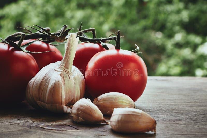 Tomates e alho foto de stock