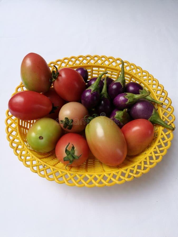 Tomates e beringelas imagem de stock