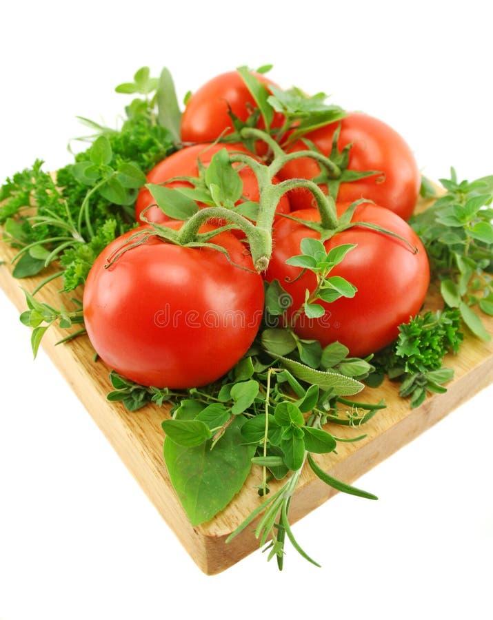 Tomates e hierbas imagen de archivo
