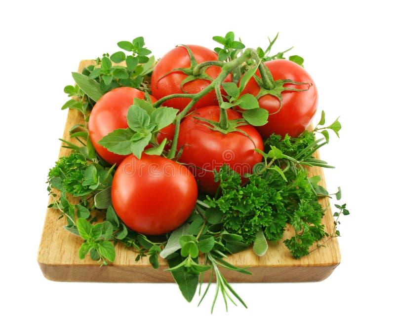 Tomates e hierbas imagen de archivo libre de regalías
