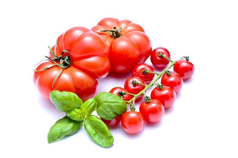 Tomates e manjericão imagens de stock royalty free