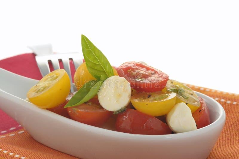 Tomates e Mozzarella da herança fotografia de stock royalty free