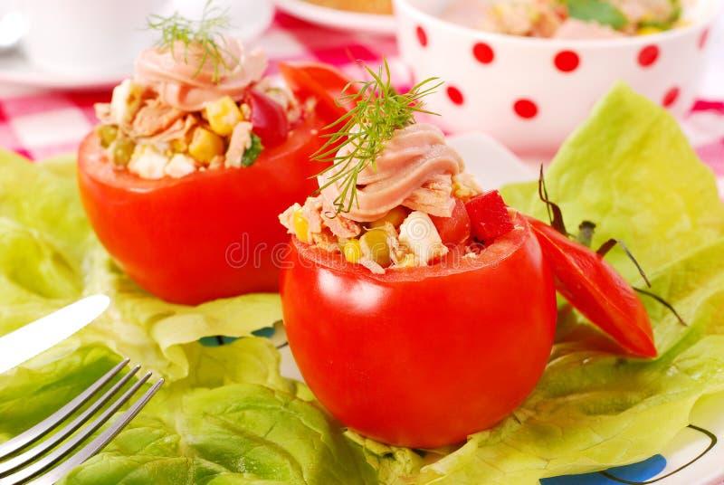 Tomates enchidos com salada de atum fotografia de stock royalty free