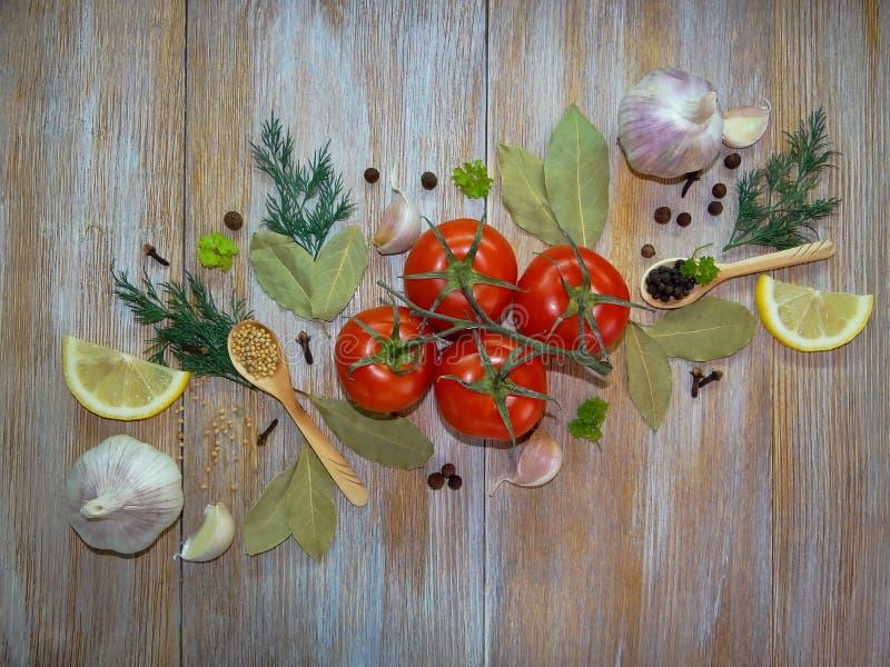 Tomates et épices photo stock