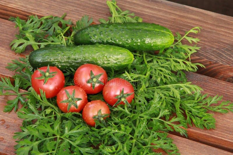 Tomates et concombres photos libres de droits
