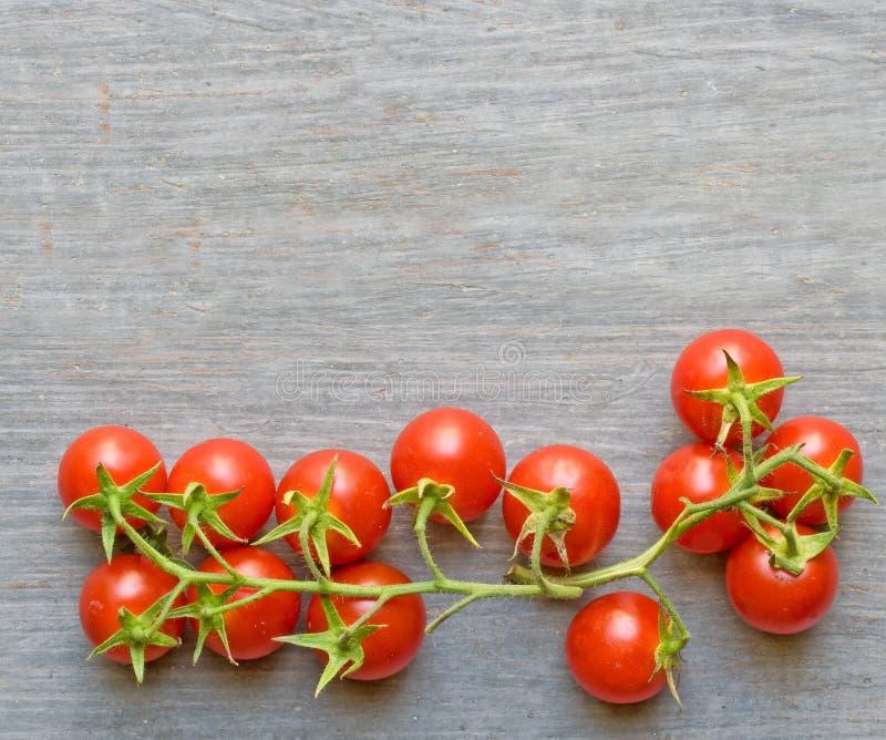 Tomates et conseil image stock
