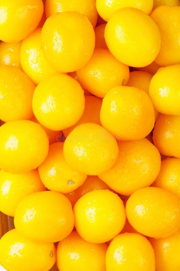 Tomates fraîches de jaune de jardin photographie stock libre de droits