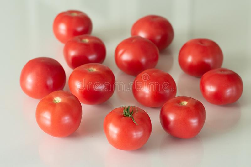 Tomates fraîches sur une table en verre blanche Moisson des tomates Vue sup?rieure image libre de droits
