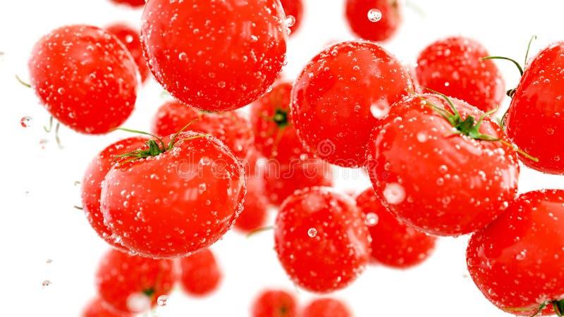 Tomates fraîches tombant avec des baisses de l'eau Concept de nourriture isolat rendu 3d image stock