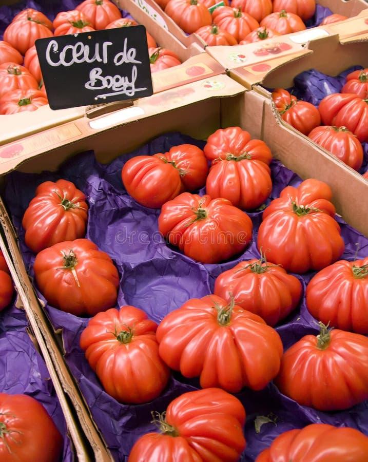 Tomates françaises image stock