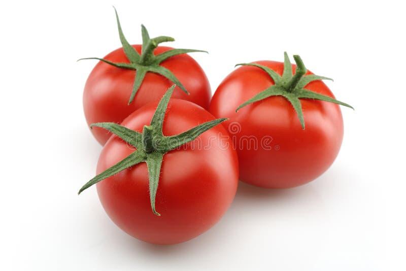 Tomates frescos