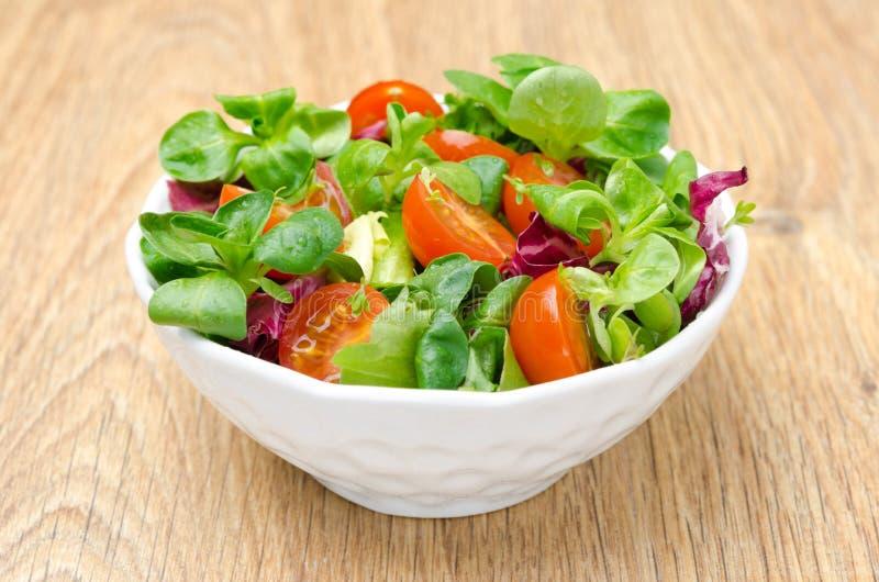 Tomates frescos clasificados de la ensalada y de cereza en un cuenco foto de archivo libre de regalías