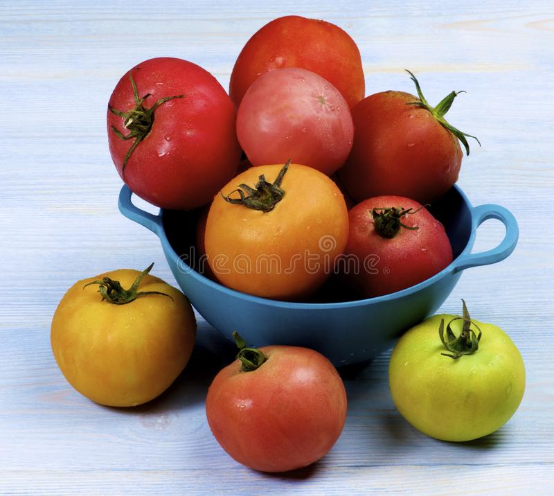 Tomates frescos coloridos imagem de stock royalty free