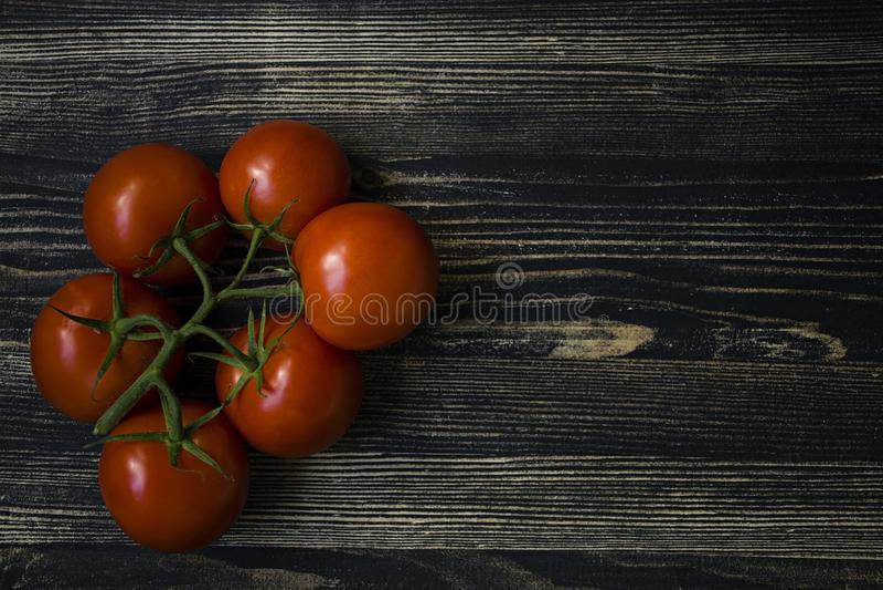 Tomates frescos em uma filial imagem de stock