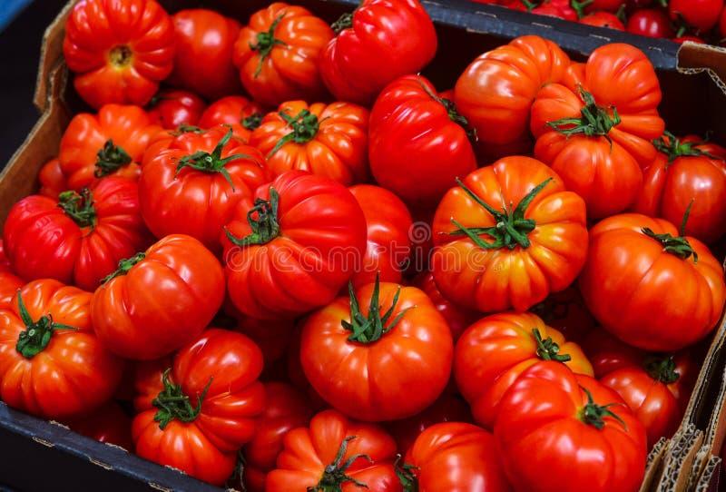 Tomates frescos en un cajón foto de archivo libre de regalías