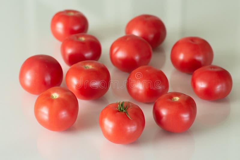 Tomates frescos en una tabla de cristal blanca Cosecha de los tomates Visi?n superior imagen de archivo libre de regalías