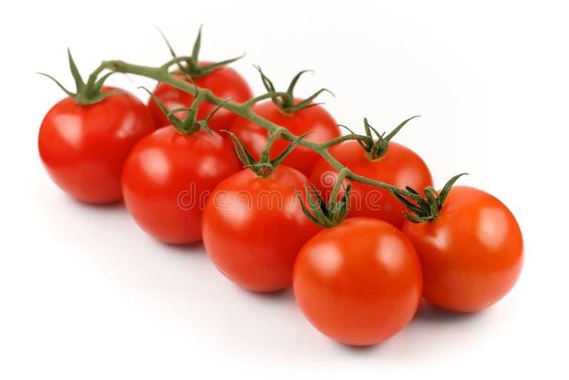 Tomates frescos, vermelhos, naturais imagem de stock royalty free