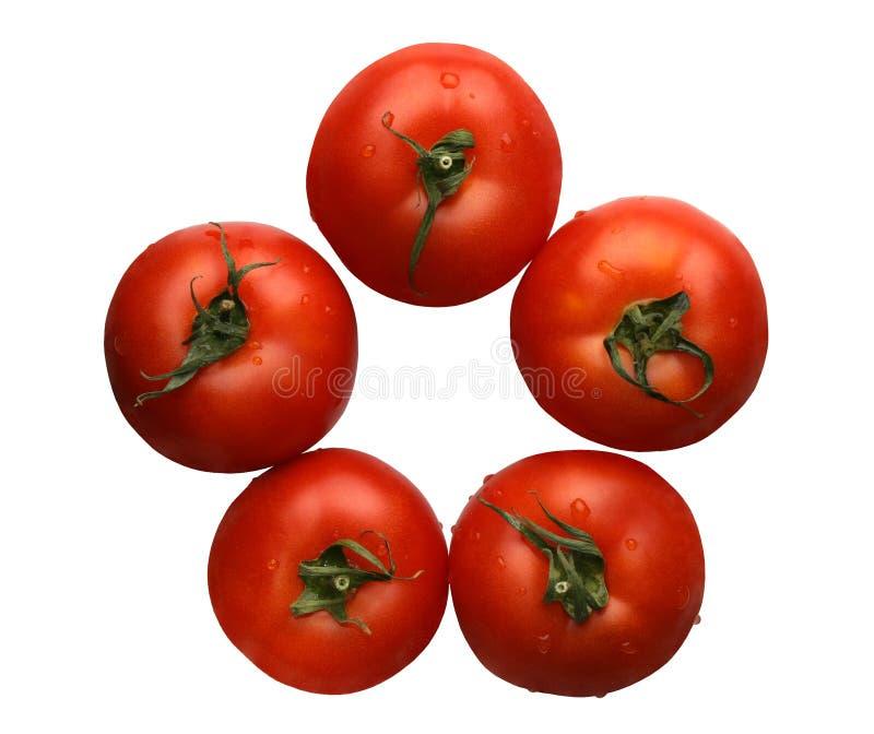 Tomates, isolados imagem de stock royalty free