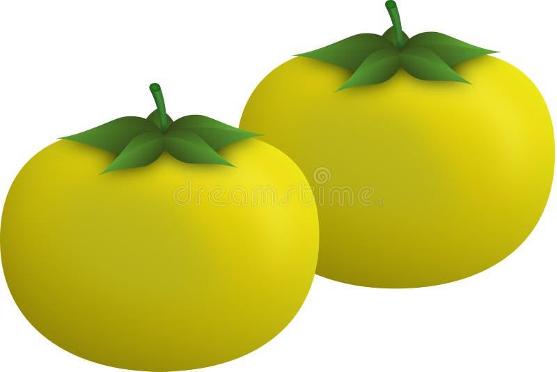 Tomates jaunes photo libre de droits