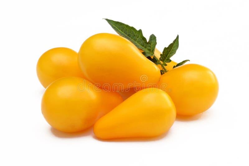 Tomates jaunes d'isolement photographie stock libre de droits